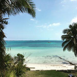 Bahamas, Baby!