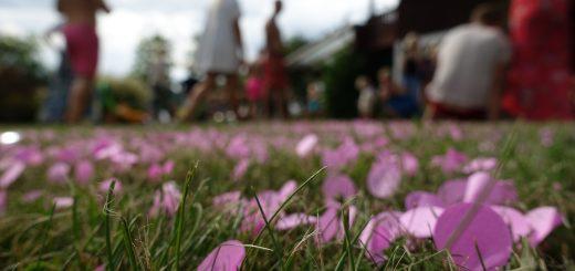 Gartenparty am See