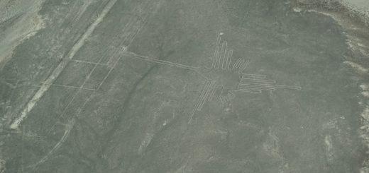 Nazca-Kolibri