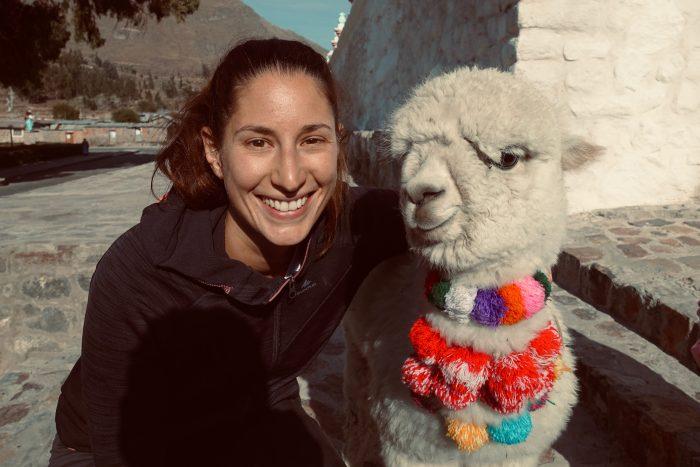 Merke: Die Fluffballs mit kurzen Hals und kurzer Schnauze sind Alpakas, keine Lamas
